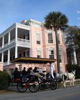 Carriage and Cocoa Package Francis Marion Hotel