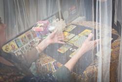 Seeking Indigo Tarrot Card Reading