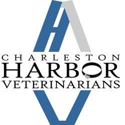Charleston Harbor Veterinarians