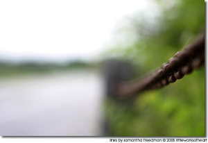 Art Photograph of Chain Links and Marsh